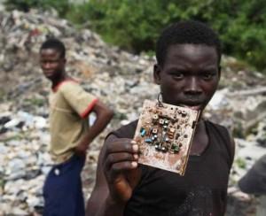 źródło www.greenpeace.org